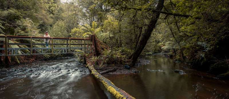 Julius River by Jess Bonde