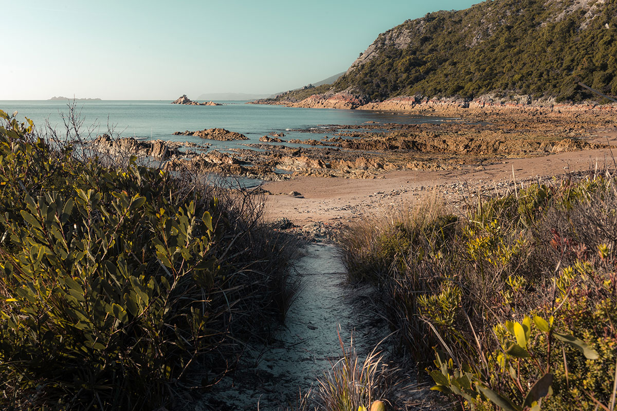 Anniversary Bay Rocky Cape National Park by Jess Bonde