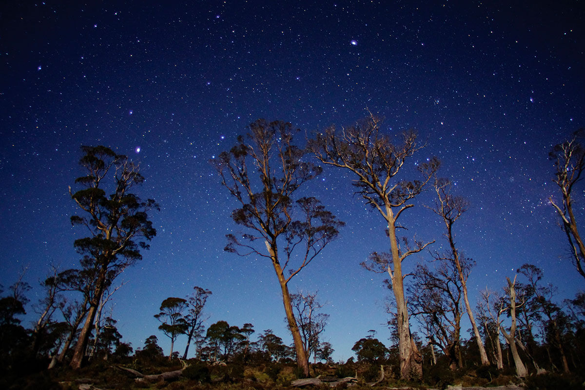 Stars in the Cradle Mountain Lake St Clair National Park by Tourism Tasmania & Masaaki Aihara