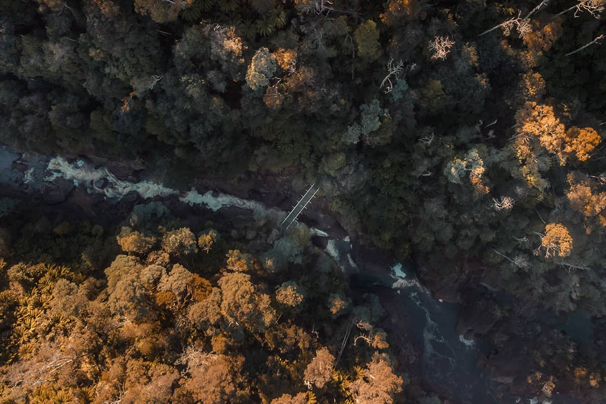 Aerial of Leven Canyon by Jess Bonde