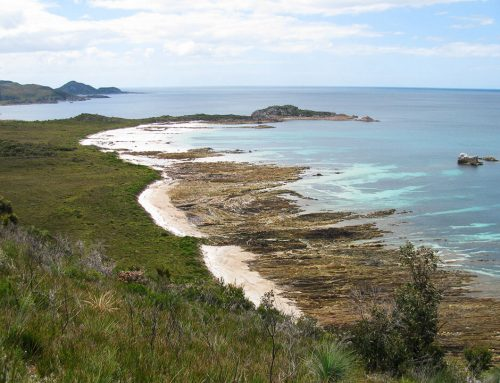 Anniversary Bay in Rocky Cape NP