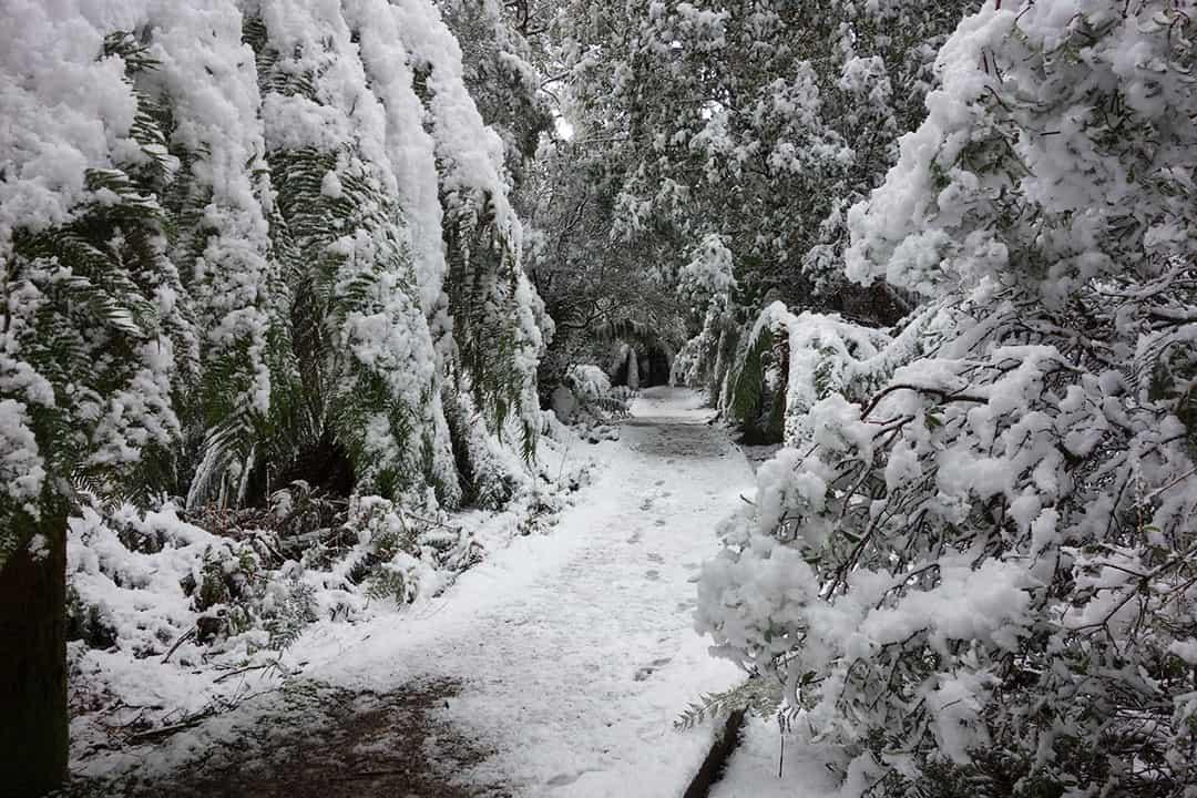 Black Bluff View Retreat Snow