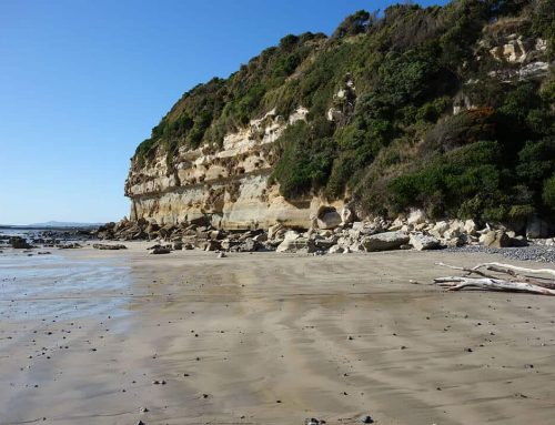 Fossil Bluff